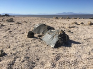 "Obsidian on the ""beach"" near Obsidian Butte"