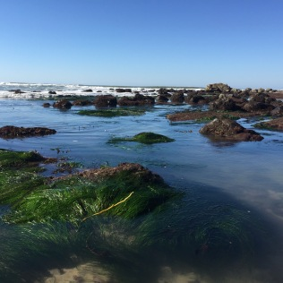 view out from tide pools